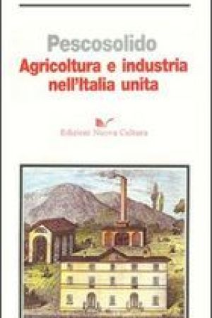 Reading books Agricoltura e industria nell'Italia unita