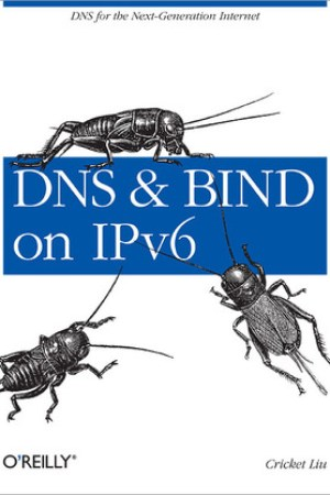 Reading books DNS and BIND on IPv6