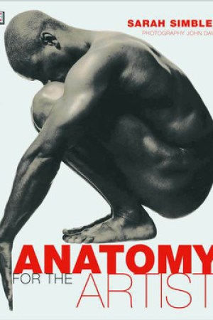 Reading books Anatomy for the Artist
