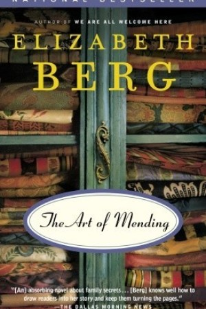 Reading books The Art of Mending