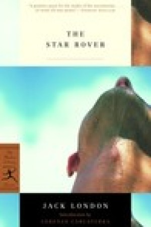 read online The Star Rover