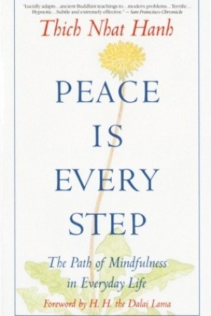 Reading books Peace Is Every Step: The Path of Mindfulness in Everyday Life