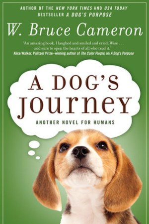 Reading books A Dog's Journey (A Dog's Purpose, #2)