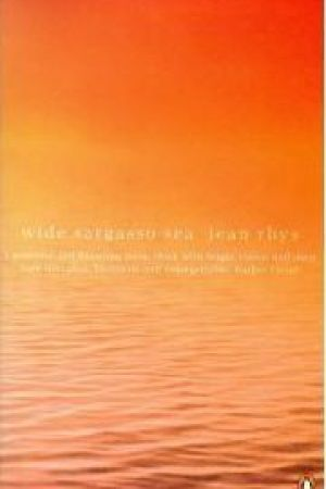 Reading books Wide Sargasso Sea