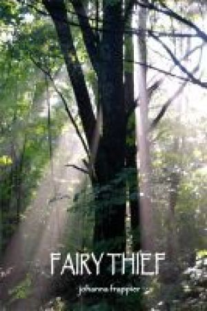 Reading books Fairy Thief (Fairy Circle, #2)