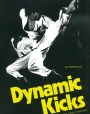 Dynamic Kicks: Essentials for Free Fighting