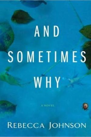 Reading books And Sometimes Why: A Novel