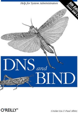 Reading books DNS and BIND