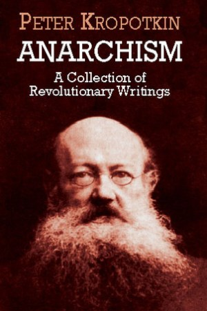 Reading books Anarchism: A Collection of Revolutionary Writings
