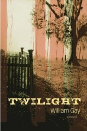 Reading books Twilight