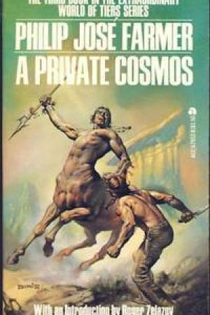 Reading books A Private Cosmos (World of Tiers #3)