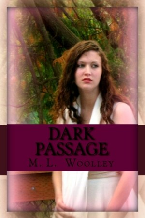 Reading books Dark Passage (Dark Passage, #1)