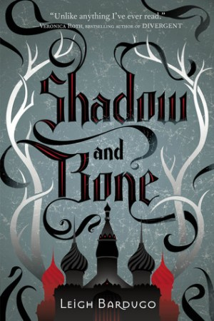 Reading books Shadow and Bone (Grisha Verse, #1)