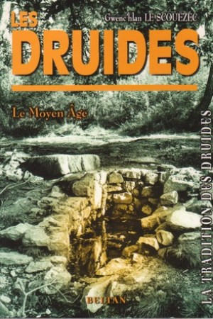 Reading books Les Druides : Le Moyen ge