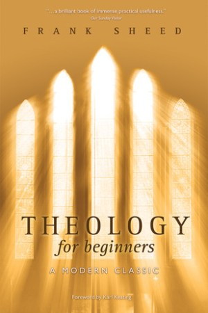 Reading books Theology for Beginners
