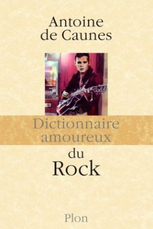 Reading books Dictionnaire amoureux du rock