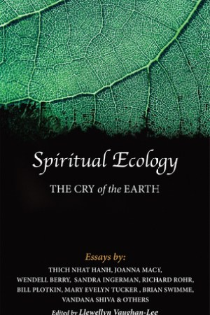 Reading books Spiritual Ecology: The Cry of the Earth
