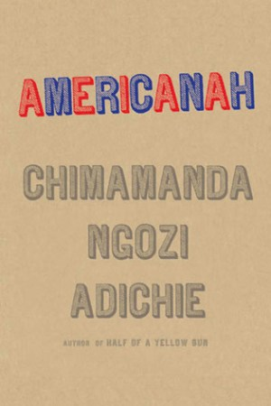 read online Americanah