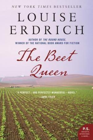 Reading books The Beet Queen