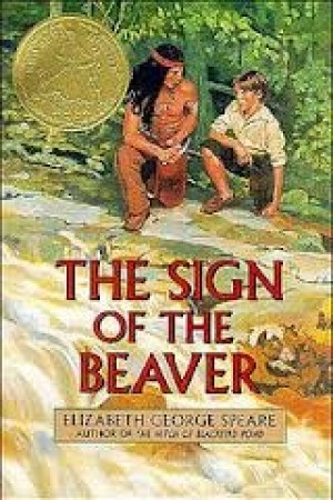 Reading books The Sign of the Beaver