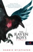 Download The Raven Boys A Hollfik (Hollfik, #1) books
