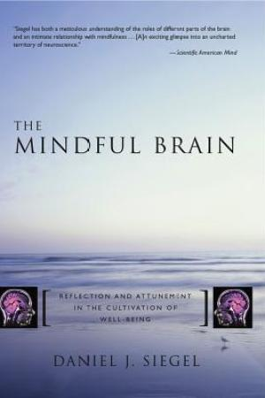 Reading books The Mindful Brain: Reflection and Attunement in the Cultivation of Well-Being