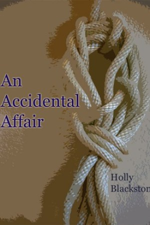 read online An Accidental Affair (Liliana Batchelor, #1)
