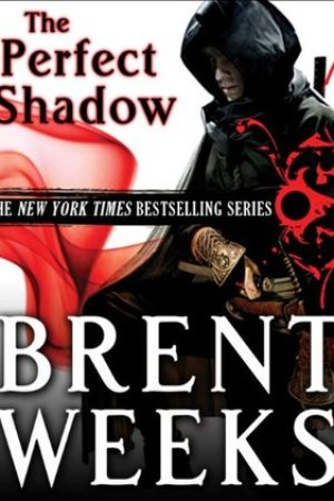 Reading books Perfect Shadow (Night Angel, #0.5)