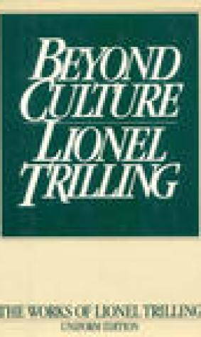 Beyond Culture: Essays on Literature and Learning
