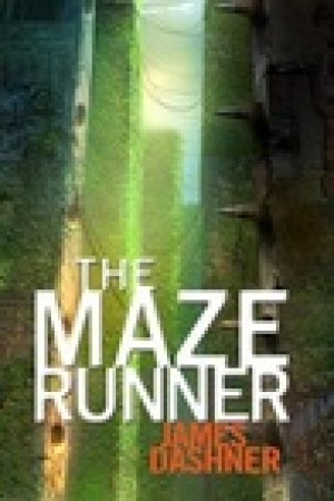 read online The Maze Runner (Maze Runner, #1)