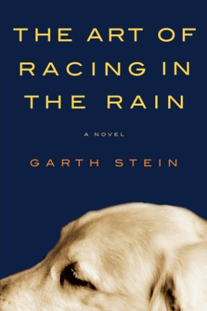 Reading books The Art of Racing in the Rain