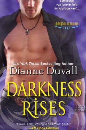 read online Darkness Rises (Immortal Guardians, #4)