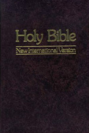 Reading books Holy Bible: New International Version