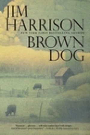 read online Brown Dog