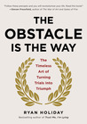 Download The Obstacle Is the Way: The Timeless Art of Turning Trials into Triumph
