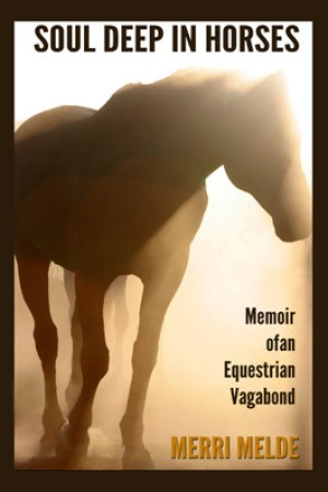 Reading books Soul Deep in Horses: Memoir of an Equestrian Vagabond