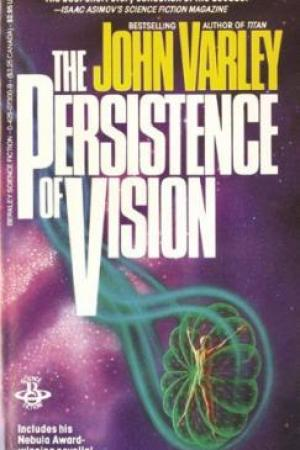read online The Persistence of Vision