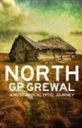Download North: A Post-Apocalyptic Journey pdf / epub books