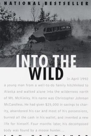 Reading books Into the Wild