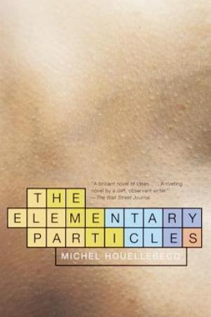 read online The Elementary Particles