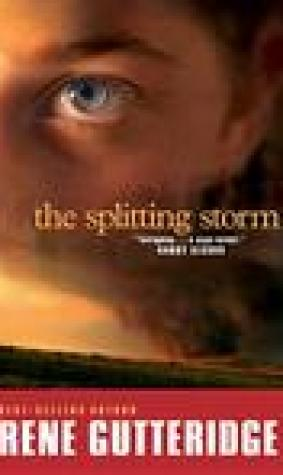 The Splitting Storm (The Storm Series #2)