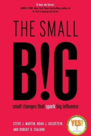 Reading books The Small Big: Small Changes That Spark Big Influence