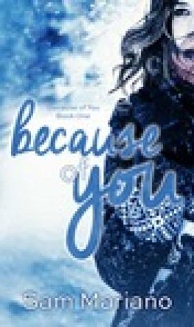 Because of You (Because of You, #1)