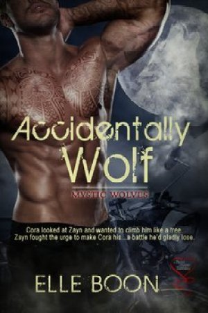 Reading books Accidentally Wolf (Mystic Wolves, #1)