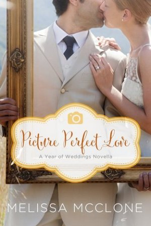 Reading books Picture Perfect Love: A June Wedding Story (A Year of Weddings Novella 2, #7)