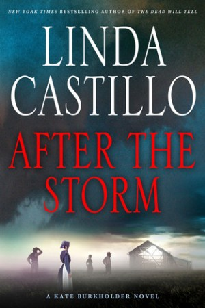 Reading books After the Storm (Kate Burkholder, #7)