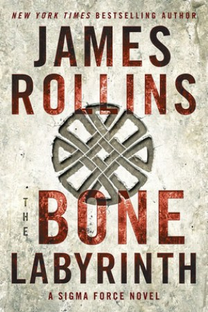 Reading books The Bone Labyrinth (Sigma Force, #11)