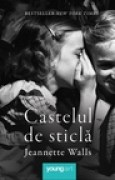Download Castelul de sticl books