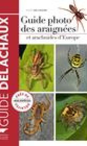 Guide photo des araignes et arachnides d'Europe