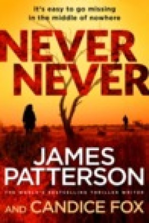 read online Never Never (Detective Harriet Blue, #1)